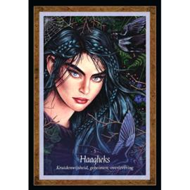 De Wijsheid uit het Feeënrijk - Lucy Cavendish