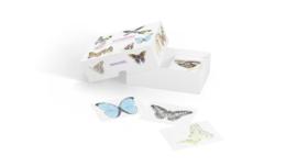 Vlinders - memoryspel