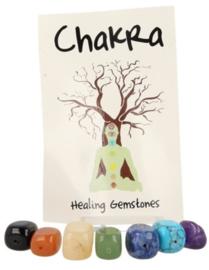Chakra edelsteen sieraden