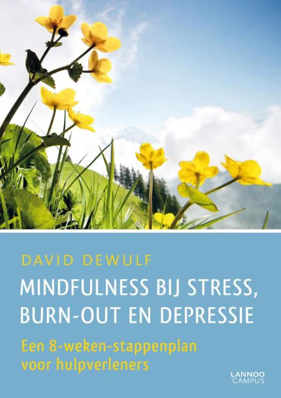 Boek - Mindfulness Bij Stress, Burn-out en Depressie - David Dewulf