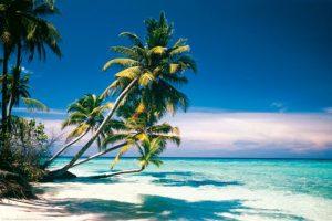 Palm Beach. 5 ml
