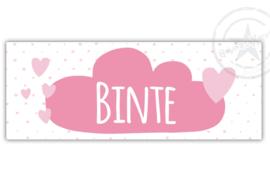 Kunststof naambordje  geboorte roze wolk met hartjes