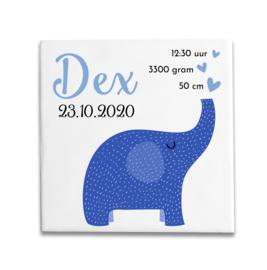 Geboortetegeltje met olifantje blauw