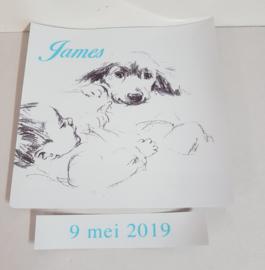 Stickerset van geboortekaartje  voor stoeltje