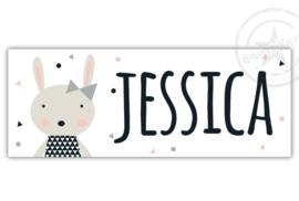 Kunststof naambordje  geboorte konijn meisje