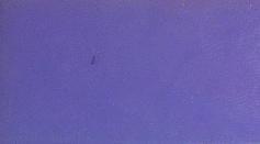 Kleurtablet paars (voor basiszeep WIT)