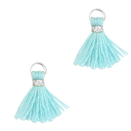 Kwastjes 1cm Zilver-Mint aqua blue