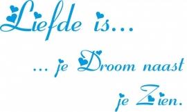 liefde is.. je droom zien.. 123_121