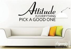 Attitude 123_315