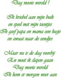 Dag Mooie Wereld 0**