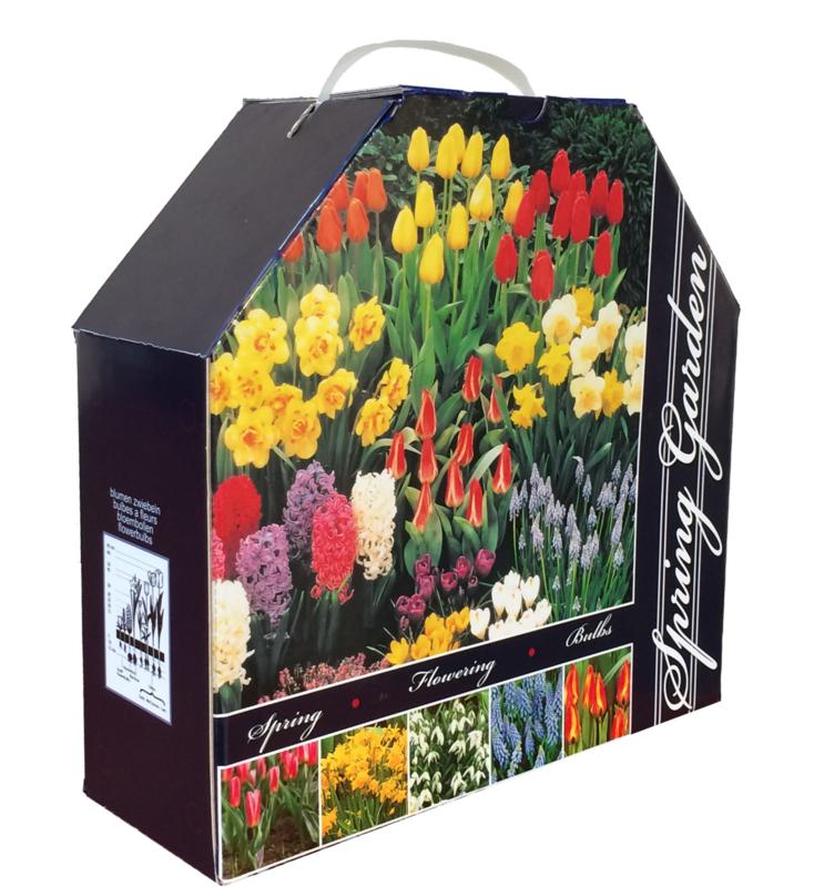 Garden Collection Box