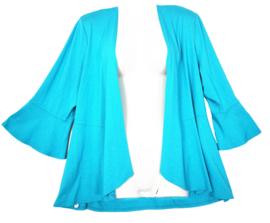 DORISSTREICH Super mooi tricot vestje 46