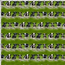 Koeien (7946)