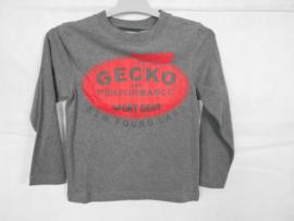 Grijze longsleeve Gecko mt 116