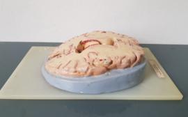 Oud medisch-anatomisch model van de pijnappelklier.