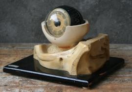 Medisch - anatomisch model van een oog.