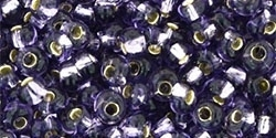 TM-03-39 Silver-Lined Tanzanite (10 g.)