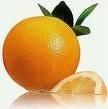 10 ml Sinaasappel + doseer pipet