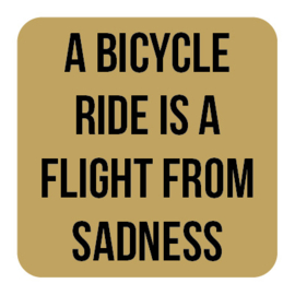 A029 | A bicycle ride is...