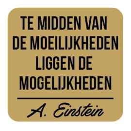 P026 | Albert Einstein - Mogelijkheden