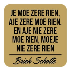 P031   Briek Schotte - Zere rien