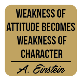 P030 | Albert Einstein - Weakness