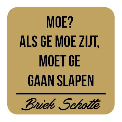 P022   Briek Schotte - Moe