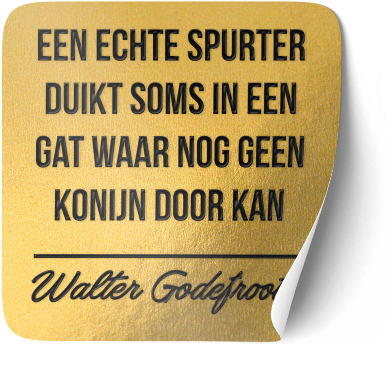 P005 | Walter Godefroot - Spurter