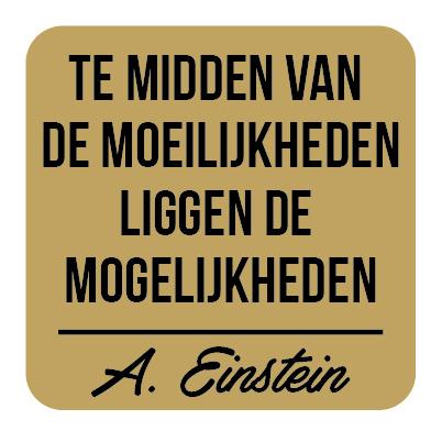 P026   Albert Einstein - Mogelijkheden