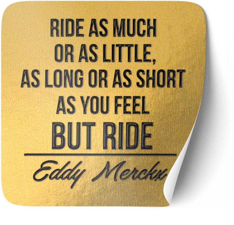 P007   Eddy Merckx -Ride
