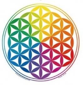 Raamsticker Flower of Life Rainbow (regenboogkleuren)