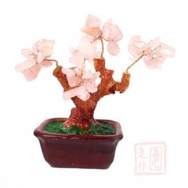 Feng Shui Geluksboompjes