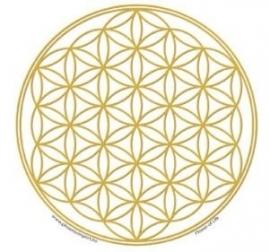 Feng Shui Raamsticker Flower of Life (goud)