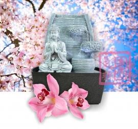 Kamerfontein Hua Lotus (Liefde, Gezondheid, Rijkdom en Rust)
