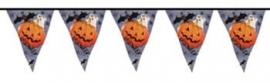 vlaglijn 4 meter halloween