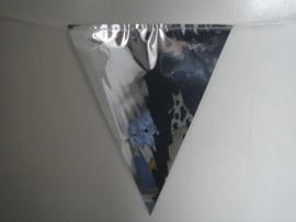 vlaglijn zilver 6 meter
