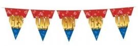 vlaglijn geslaagd serie bubbels