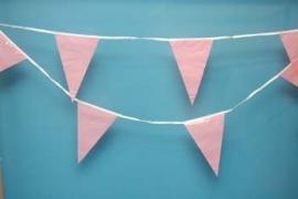 roze vlaglijn