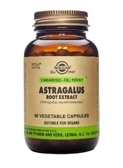 Astragalus Root Extract 60 caps