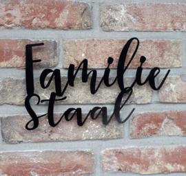 Naambord Familie Achternaam Zwart RVS