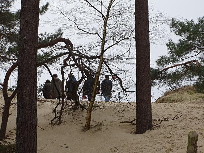 Foto van Rookoven.com