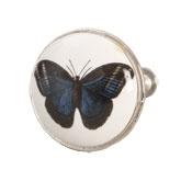 Knop vlinder