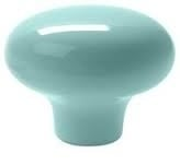 Knop large mint