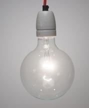 Globelamp 95mm 100w helder