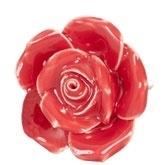 Knop roosje rood