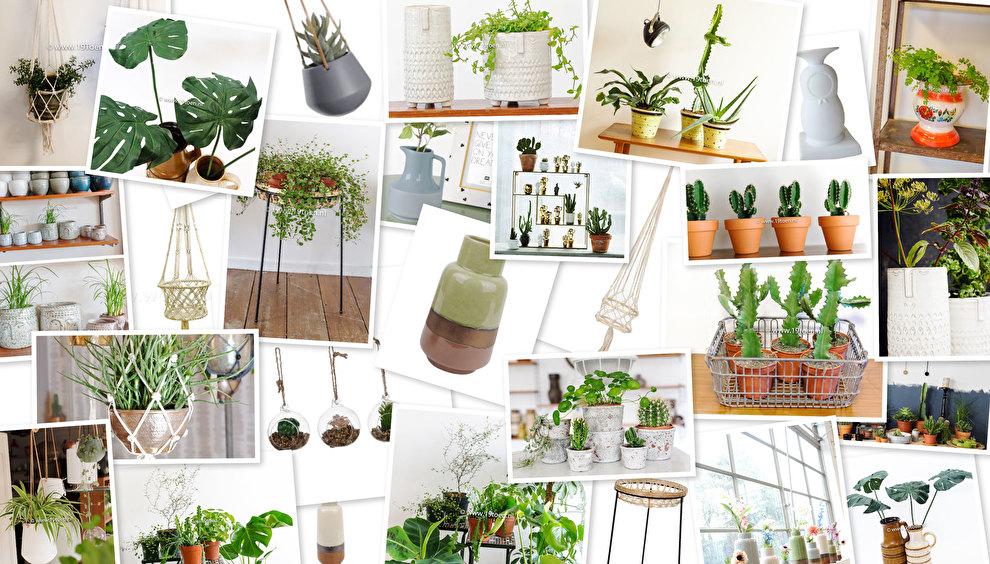 pot,-planten-vaas-klein.jpg