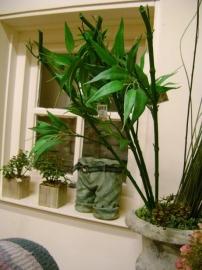 bamboe tak.