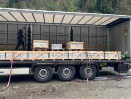 VISGRAAT Tuin & Terras maar ook Vloertegel marmer Bianco Carrara C Super wit 400x200x20 mm mat gezoet Prijs per m2