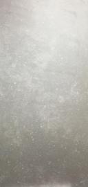 Vloertegel Blue Stone grijs 1200x600x10 mm mat Prijs per m2