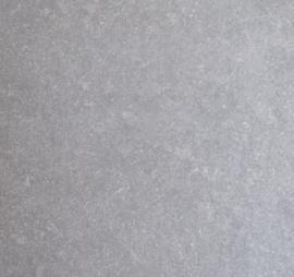 Terrastegel & Tuintegel Vorstvrij Outdoor keramiek Hardsteen grijs blauw gezoet 60x60x2 cm Prijs per m2